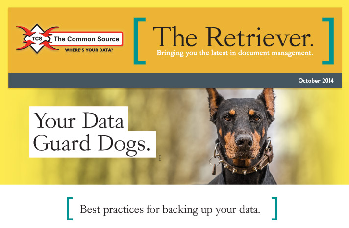 Your Data Guard Dogs.